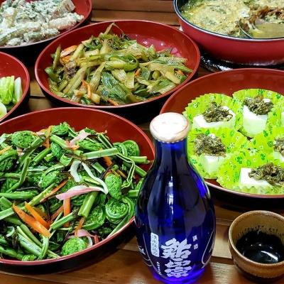 矢代豆腐の冷奴 + 山菜料理 + 半そば + ドリンクセット